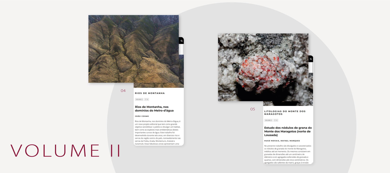 Lucanus Website - volume II - artigos